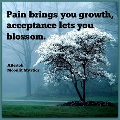 Pain brings you growth, acceptance lets you blossom