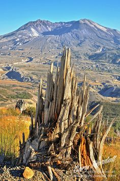 Cause and Effect. This is actually Mt. St. Helens in Washington, but is was too cool to not pin.