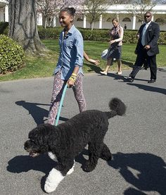 Sasha Obama and Bo #dog #celebrities   http://www.petrashop.com/