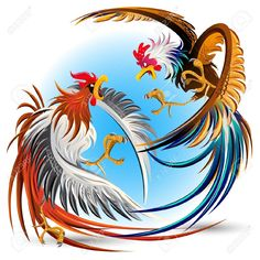 Rooster Fight Stock Vector Illustration And Royalty Free Rooster ...
