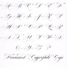 Copperplate Script - Flourished Capitals - by Lindsey Hook Flourish Calligraphy, Calligraphy Worksheet, Calligraphy Tutorial, Copperplate Calligraphy, Calligraphy Practice, How To Write Calligraphy, Calligraphy Handwriting, Calligraphy Letters, Penmanship