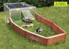 1000 ideas about tortoise enclosure on pinterest tortoise table - 1000 Ideas About Tortoise House On Pinterest Tortoise