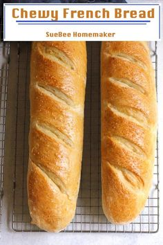 Best Bread Recipe, Easy Bread Recipes, Cooking Recipes, Chewy Bread Recipe, Italian Bread Recipes, Beginners Bread Recipe, Cornbread Recipes, Sandwich Bread Recipes, Jiffy Cornbread