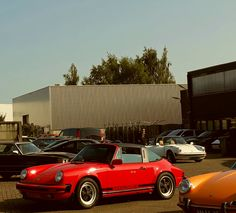 Porsche 911 targa #alfamario