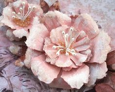 Swirlydoos Scrapbook Kit Club: Video tutorial to make Elegance, a sugared flower by Maggi Harding