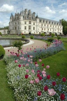 Castle of Chenonceau and Gardens, France - Love the tulips with the delicate blue and white flowers