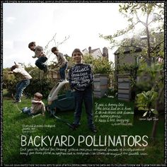 Backyard Pollinators. Lexicon of Sustainability.
