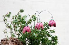 Mit Blumen Freude bereiten.   Wunderschöne, aufwendig und liebevoll, von Hand gefertigte Glockenblume/Keramikblume, ein zauberhafter Schmuck für Ihr Heim.  Die Keramikblumen habe ich, je nach...