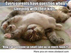 Everybody who has small relatives has asked the same question :D