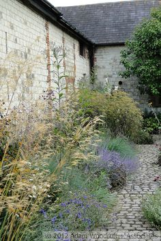 Cobbled path and soft planting at Bury Court by Adam Woodruff. Back Gardens, Small Gardens, Outdoor Gardens, Love Garden, Dream Garden, Plant Design, Garden Design, Landscape Architecture, Landscape Design