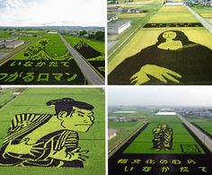 """""""Every  year, farmers in the town of Inakadate in Aomori, Japan create vast works of art in their rice paddies. It's done by planting purple and yellow-leafed rice along with their local green-leafed variety. These rice paddy images are visible during the growing season, until the harvest in September. The tradition started in 1993 and each of these five images shows a different year's design."""""""