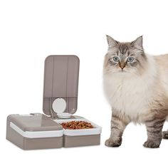 Want a worry-free way to ensure your furry friend is fed on schedule? The PetSafe Automatic Two Meal Pet Feeder makes it easy for busy pet parents to ensure their cats and dogs are fed on time every day. Just fill the two food trays and set the timer, then rest easy knowing your pet will have their meals delivered on time. The two food trays each holds up to 1.5 cups of dry food. You can progr...* You can get additional details at the image link. (This is an affiliate link) #dogfeeding Diy Bird Feeder, Dog Feeder, Online Pet Supplies, Dog Supplies, Diy Pet, Automatic Cat Feeder, Dry Cat Food, Dog Food, Cat Store