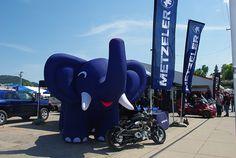Metzeler Elephant  www.sturgismotorcyclerally.com