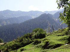Lovely Kashmir