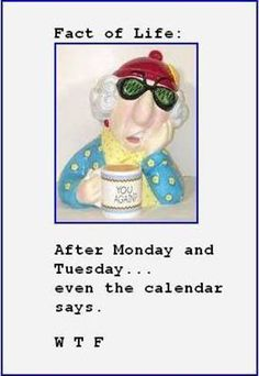 Maxine Quotes | Fact of Life : Courtesy of Maxine | Shibley Smiles