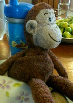 LOST in  East Oxford  Extremely belated, but Cuddly Monkey toy was lost in Oxford about 3 years ago and is still sorely missed by his owner. Think he was lost in East Oxford. #lost #toy #monkey #jellycat Contact: https://www.facebook.com/lucyleeallen