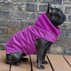 THE LATCH - Girls - Fuchsia Corduroy winter dog coat for pugs and french bulldogs Dog Harness, Dog Leash, Crochet Dog Sweater, Fleece Sweater, Dog Winter Coat, Dog Clothes Patterns, Pet Clothes, Dog Clothing, Girl And Dog