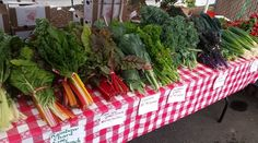 Center for Food Safety   Blog   Celebrating Local and Sustainable Food Systems During National Farmers Market Week