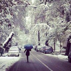 Snow in Tehran December 2013 !!! ♡