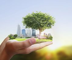Are you looking for a job that allows you to work flexibly and help the Earth? Apply for one of these flexible green jobs hiring now! Green Jobs, Environmental News, Sustainable City, Hiring Now, Jobs Hiring, Energy Conservation, Energy Projects, Energy Use, Sustainable Development