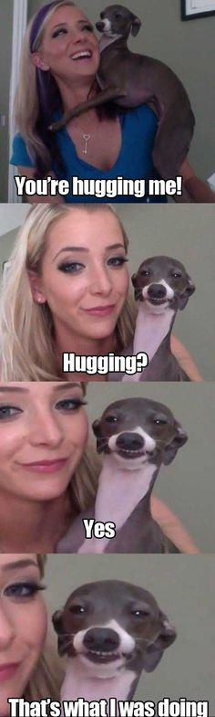 This looks so much like the Italian Greyhound we had, except he didn't look scary, and he really did hug us!!!