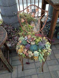 deko ideen selbermachen garten alte stühle sukkulenten