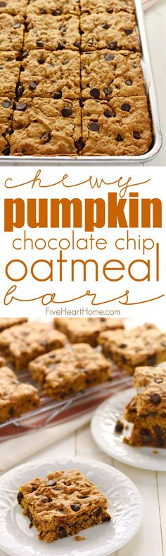 Chewy Pumpkin Chocolate Chip Oatmeal Bars ~ soft, moist, and loaded with pumpkin, chewy oats, warm spices, and rich chocolate chips for a perfect fall treat! | FiveHeartHome.com