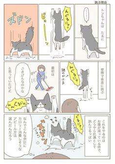 跳ぶ理由 | うちの猫がまた変なことしてる。【猫まんが】 Animals And Pets, Cats, Animaux