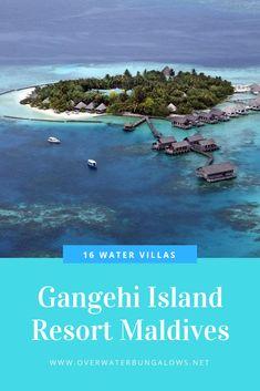 Maldives Water Villa, Polynesian Islands, Beach Hacks, Overwater Bungalows, Resort Villa, Island Nations, Island Resort, Solo Travel, Resorts
