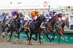 Danzing Candy, NYQUIST and Gun Runner 2016 Kentucky Derby