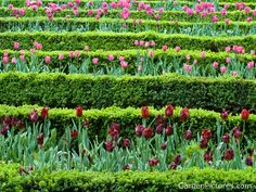 Gardens | High Quality Images of Spring Flower Gardens | Garden Pictures