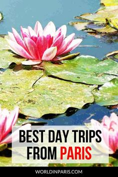 Here's the list of Best Day Trips from Paris, with our best tips to get there. No matter what you're into, all these Paris day trips are interesting, fun and exciting! From Versailles to Giverny or Mont St Michel, discover the best side trips from Paris today! #Paris #France