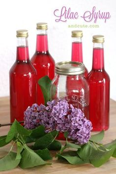 """""""Homemade Lilac Syrup"""" Cool! I didn't even know you could eat lilacs! And it's so pretty!!"""