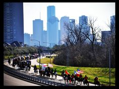 It's rodeo season in Houston!... oh the memories... Lucy and I would walk to the end of our street every year when she was young and watch the trail riders come up Stella Link :)
