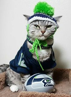 Seattle Seahawks fan
