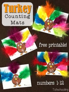 Turkey Feathers Counting Mats