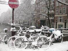 bikes snowed in winter cold weather cycling bike snow http://www.biketalker.com