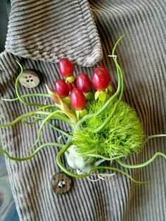 groom's boutonniere with tillandsia, sustainably grown dianthus green trick and hypericum berries