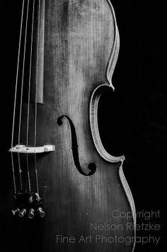 cello photography art - Google Search