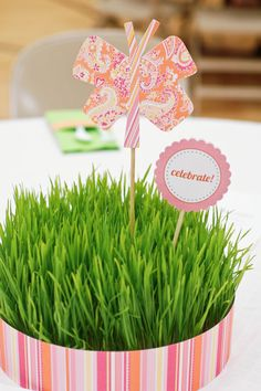 wheat grass grown in  those plastic trays that go under plants.- I used this for a baby shower and put little lotions and such in them.