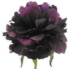 Ranunculus spray in purple silk ranunculus silk flowers breaks ranunculus spray in purple silk ranunculus silk flowers breaks down to 93each flower 3 flowers wedding goodies pinterest ranunculus silk mightylinksfo
