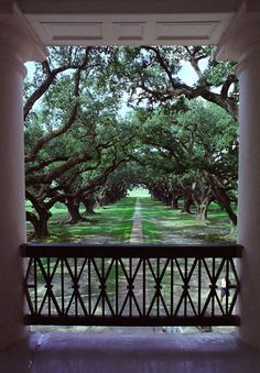 Oak Alley Plantation - Vacherie, Louisiana.  I could have sat here all day.  Many movies filmed here including part of North and South