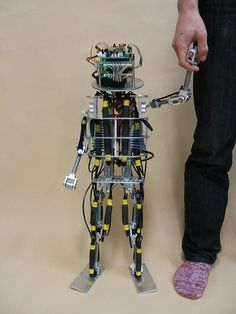 robot humanoid with pams (pneumatic air muscles)