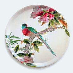 Dekoratif Papağanlar - MobDizayn – Mobilya ve Ev Dekorasyonu