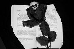 Blumen sprachen ohne Stimme und doch deutlich. Manchmal schickten sie ihre Worte in Bildern. Für die junge Frau hatten Blumen gewiss etwas Magisches. Etwas, das sie sich nicht erklären konnte. Blum… Wille, Edgar Allan Poe, Poems, Bitten, Depression, Beautiful Life, New Books, Peace, Eyes