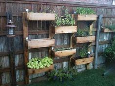 Wood pallet DIY wall garden
