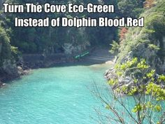 This is the Killing Cove in Taiji Japan, 2,200 dolphins are brutally hacked to death here every year! Get involved! Be the Voice they so desperately need!