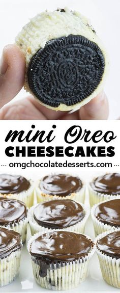 Mini Oreo Cheesecake is an easy recipe with only 7 ingredients for delicious bite-sized Oreo cheesecake with a thick layer of silky ganache on top. So yummy Mini Desserts, Easy Desserts, Delicious Desserts, Dessert Recipes, Yummy Food, Mini Cheesecakes With Oreos, Healthy Desserts, Bite Sized Desserts, Mini Chocolate Desserts