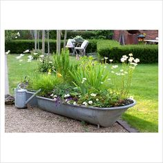 my son and I are going to plant a bee garden in an old tin bath. Just need an old tin bath now I guess. Container Plants, Container Gardening, Tin Bath, Bath Tub, Bee Friendly Plants, Stock Tank, Farmhouse Garden, Exterior Doors, Water Features