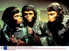 Zira (Kim Hunter), Dr. Milo (Sal Mineo), & Cornelius (Roddy McDowall) - Escape from the Planet of the Apes (1971)